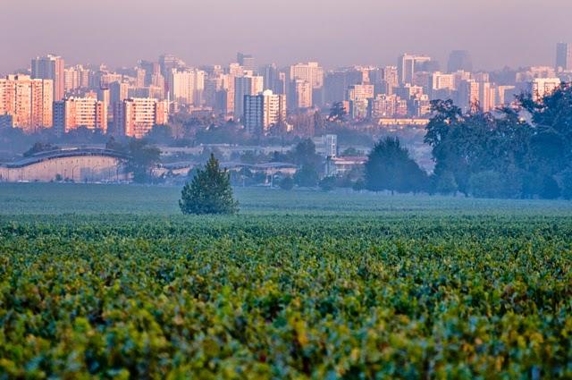 Vinícola Cousiño Macul em Santiago do Chile