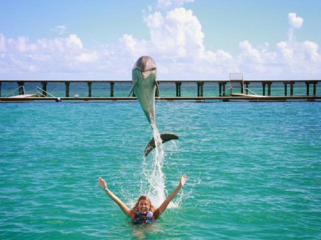 Seguro Viagem em Punta Cana