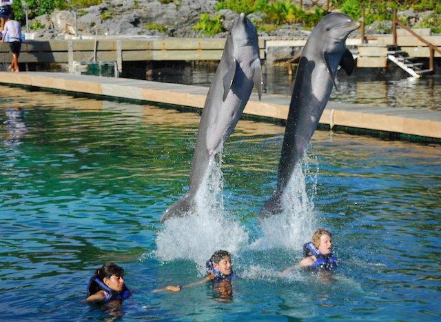 O que fazer em Cancún com as crianças
