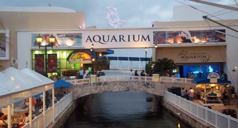 Interactive Aquarium em Cancún