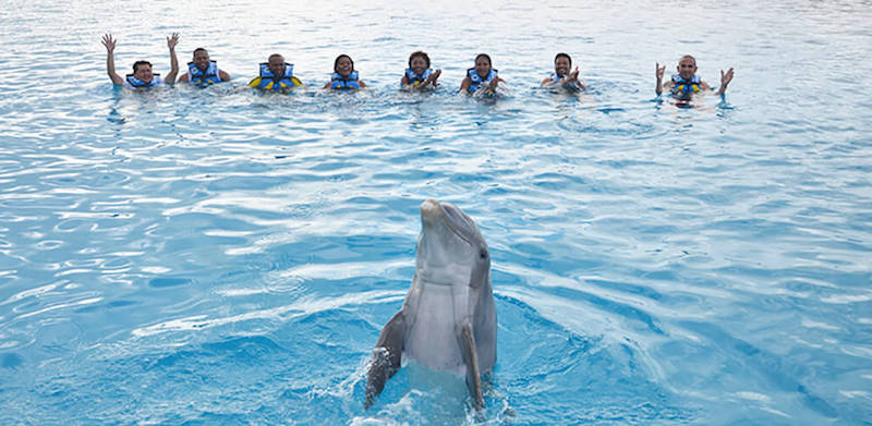 Nado com os golfinhos no Parque Chankanaab Beach Adventure Park