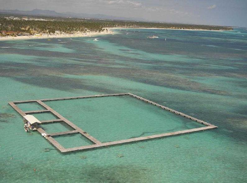 Área do Dolphin Island Park em Punta Cana