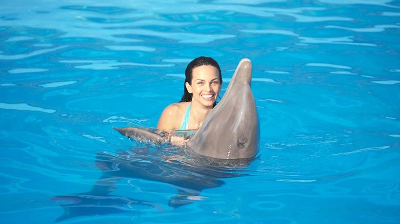 Golfinho no Dolphin Island Park em Punta Cana