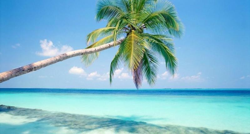 Como chegar na Isla Contoy em Cancún