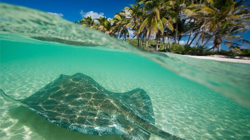 A paradisíaca Isla Contoy em Cancún