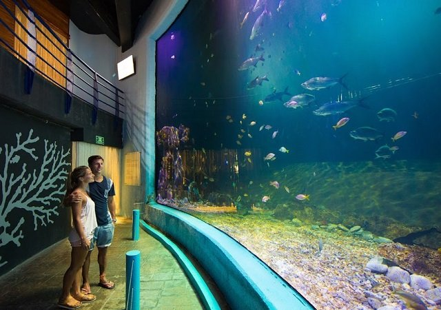 Interactive Aquarium em Cancún no México