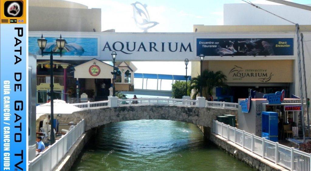 Aquário Interativo de Cancún